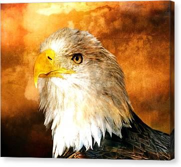 Eagle 200a Canvas Print by Marty Koch