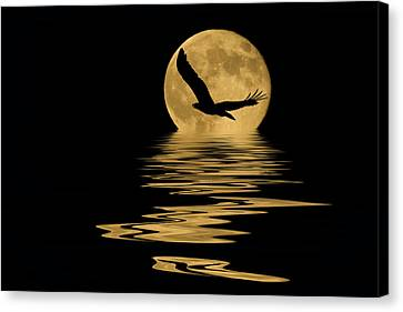 Eagle In The Moonlight Canvas Print by Shane Bechler