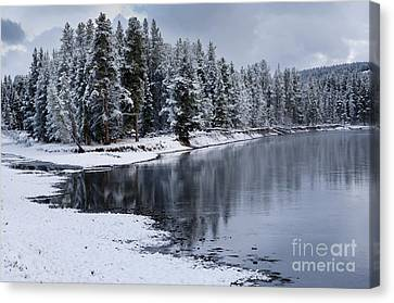 Early Fall Storm In Yellowstone Canvas Print by Sandra Bronstein