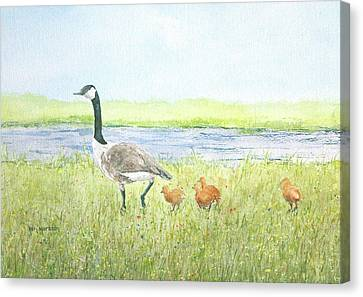 Early Instruction Canvas Print by Ken Marsden