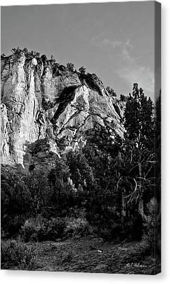 Early Morining Zion B-w Canvas Print by Christopher Holmes