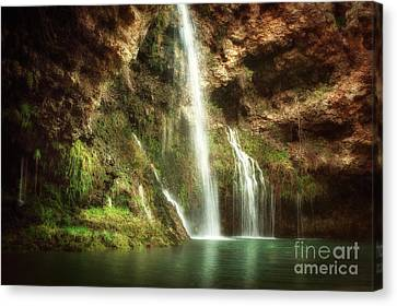 Early Morning At Dripping Springs Canvas Print by Tamyra Ayles
