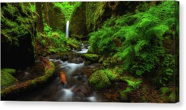 Early Morning At The Grotto Canvas Print by Darren White