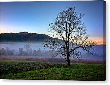 Early Morning Mist In Cades Cove Canvas Print by Rick Berk
