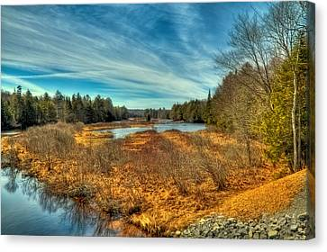 Early Spring At The Bridge Canvas Print by David Patterson