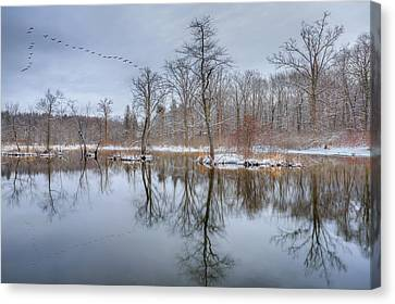 Early Spring In New England Canvas Print by Bill Wakeley