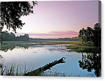 Eastern Morning Canvas Print by Phill Doherty