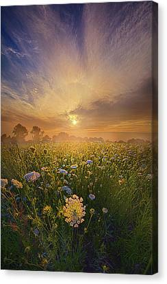 Echos The Sound Of Silence Canvas Print by Phil Koch