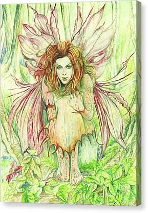 Edana The Fairy Collection Canvas Print by Morgan Fitzsimons