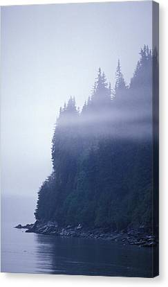 Eerie Seascape With Trees, Cliff Canvas Print by Rich Reid