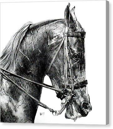 Effort Canvas Print by Barbara Keith