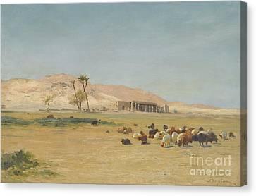 Egyptian Landscape Canvas Print by Celestial Images