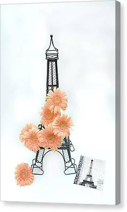 Eiffel Tower Peach Gerber Daisies Cottage Decor - Eiffel Tower Floral Daisies Still Life Decor Canvas Print by Kathy Fornal