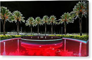 Eight Palms Drinking Wine Canvas Print by David Lee Thompson