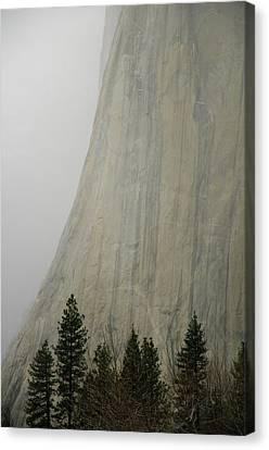 El Capitan, Yosemite National Park Canvas Print by André Leopold