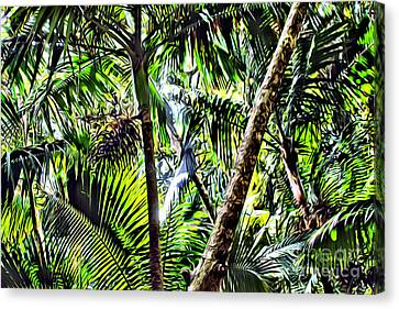 El Yunque Canopy Canvas Print by Carey Chen