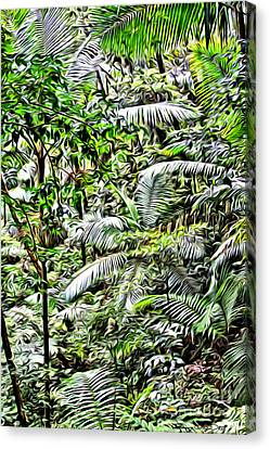 El Yunque Rainforest 4 Canvas Print by Carey Chen
