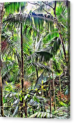 El Yunque Rainforest 6 Canvas Print by Carey Chen