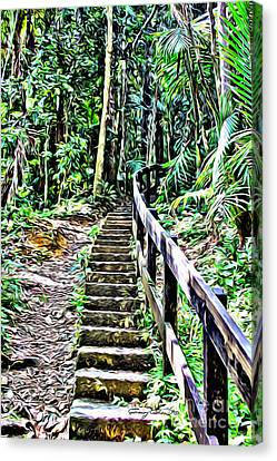 El Yunque Stairway Canvas Print by Carey Chen