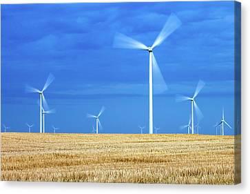 Electric Pinwheels Canvas Print by Todd Klassy