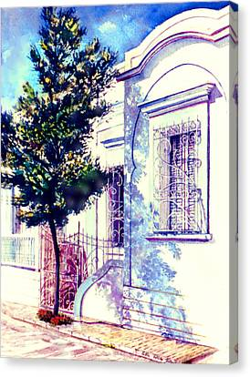 Elegance And Modesty Canvas Print by Estela Robles