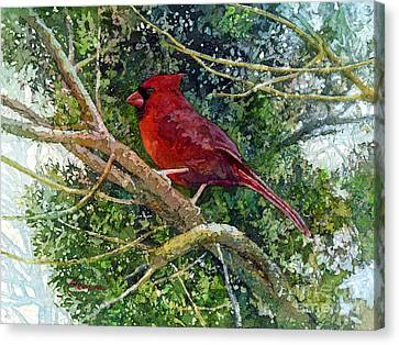 Elegance In Red Canvas Print by Hailey E Herrera