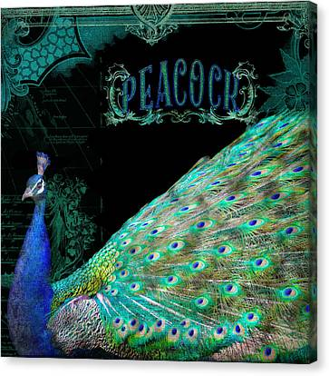Elegant Peacock W Vintage Scrolls Typography 4 Canvas Print by Audrey Jeanne Roberts