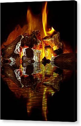 Element Reflections Canvas Print by Tom Gowanlock