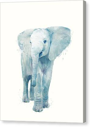 Elephant Canvas Print by Amy Hamilton