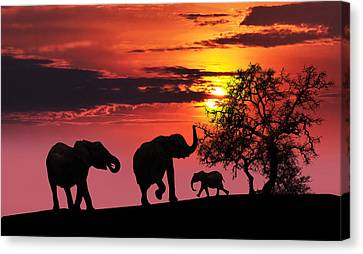 Elephant Family At Sunset Canvas Print by Jaroslaw Grudzinski