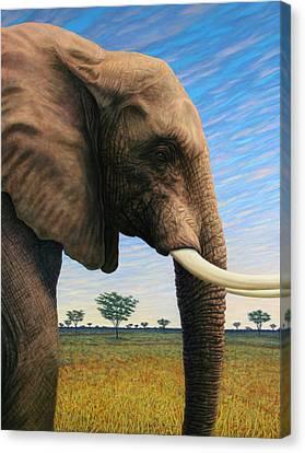Elephant On Safari Canvas Print by James W Johnson
