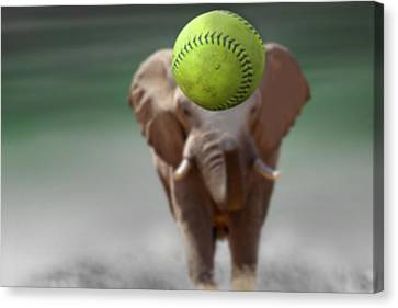 Elephant With Ball Canvas Print by Ralph Klein