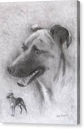 Eliot Canvas Print by Jack Skinner