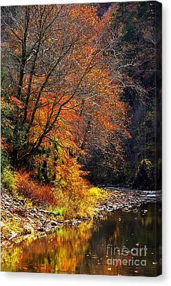 Elk River Autumn Canvas Print by Thomas R Fletcher