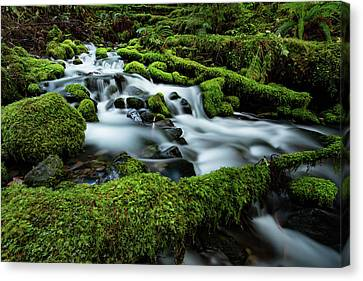 Emerald Flow Canvas Print by Edgars Erglis