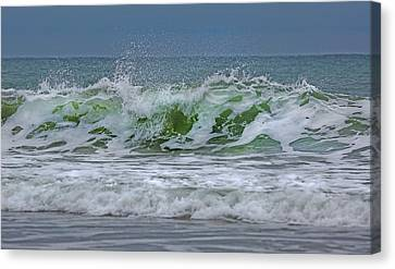 Emerald Jewel  Canvas Print by Betsy C Knapp