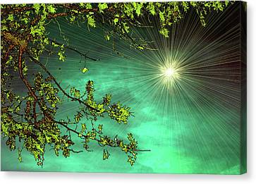 Emerald Sky Canvas Print by Tom York Images