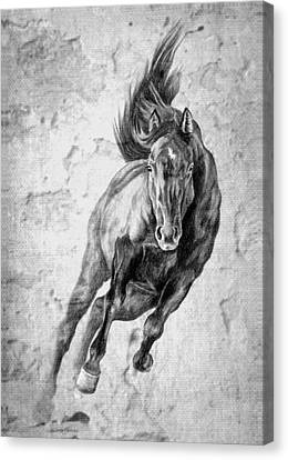 Emergence Galloping Black Horse Canvas Print by Renee Forth-Fukumoto