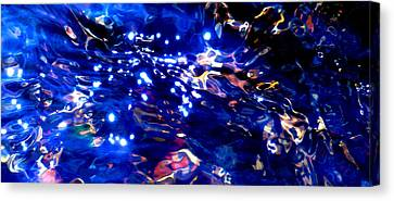 Enchanted Night Canvas Print by Terril Heilman