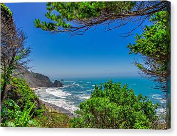 Endert's Beach Redwoods National Park Canvas Print by Scott McGuire