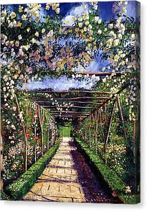 English Rose Trellis Canvas Print by David Lloyd Glover