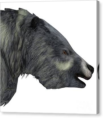Eremotherium Sloth Head Canvas Print by Corey Ford