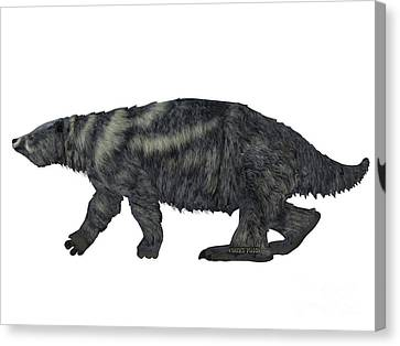 Eremotherium Sloth Side Profile Canvas Print by Corey Ford