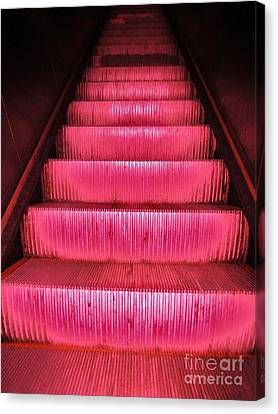 Escalier Canvas Print by Reb Frost