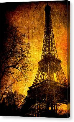 Esthetic Luster Canvas Print by Andrew Paranavitana