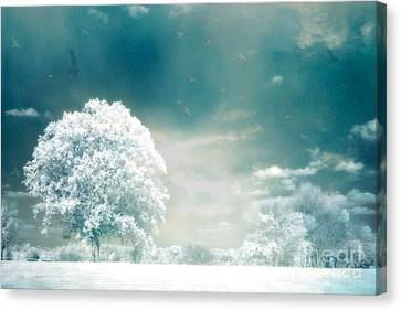 Ethereal Surreal Dreamy Nature Trees Landscape - Aqua Teal Mint Infrared Nature  Canvas Print by Kathy Fornal