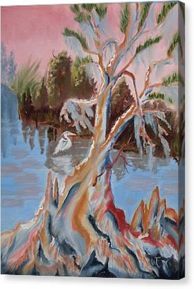 Eureka  Cypress On The Ocklawaha River  Canvas Print by Warren Thompson