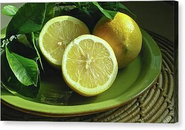 Eureka Lemons Canvas Print by James Temple