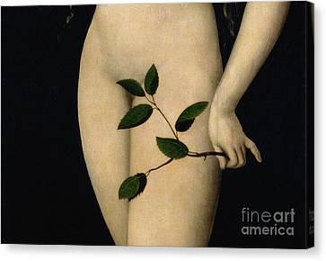 Eve Canvas Print by The Elder Lucas Cranach
