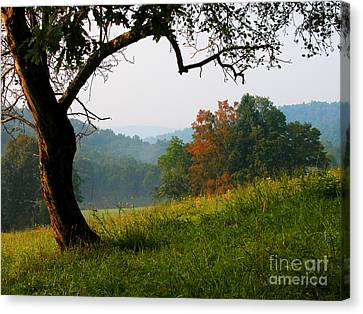 Evening In The Pasture Canvas Print by Thomas R Fletcher